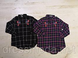Рубашки для девочек Glo-Story 134-164 p.p.