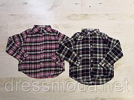 Рубашки для девочек Glo-Story 98-128 p.p.