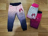 Спортивные брюки для девочек Miss Girl 98-128 р.р.