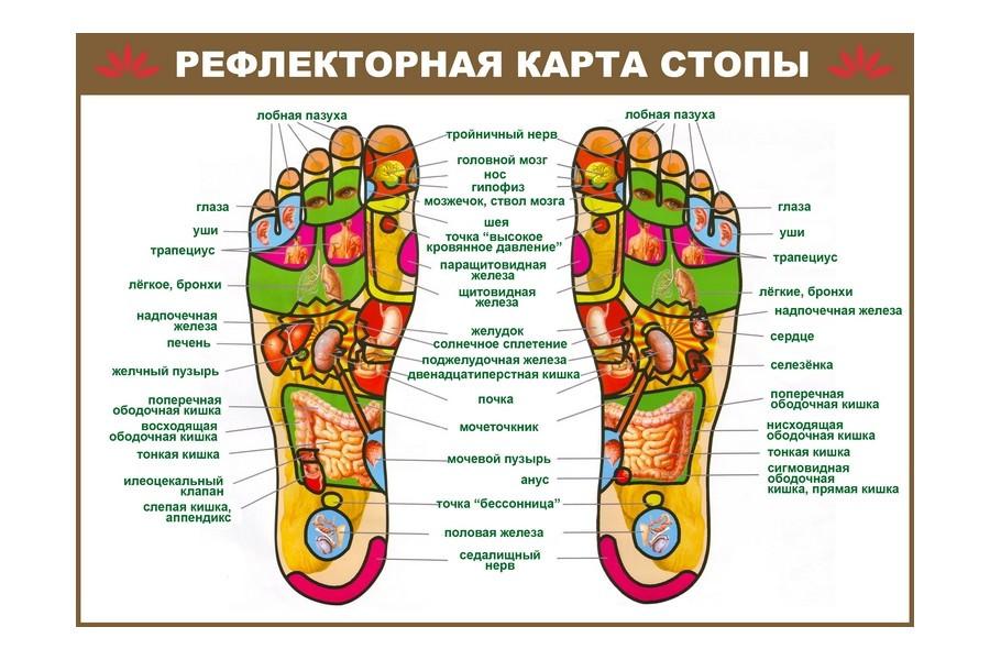 Электрические массажеры ступней ног белье женское недорого в розницу