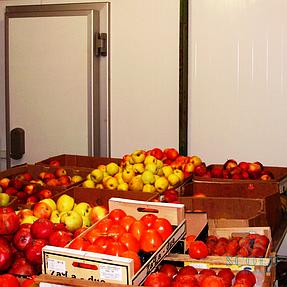 Холодильная камера для хранения овощей в городе Днепрорудное 5