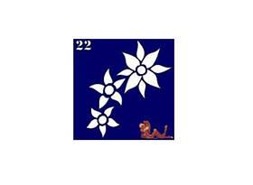 Трафареты синие, 6x6 для био тату №22
