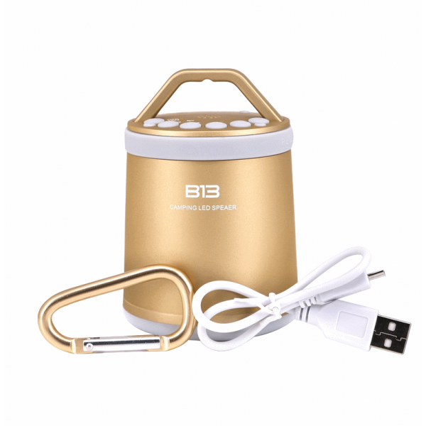 Колонки | Беспроводная колонка | Портативная колонка с Bluetooth WJ-B13