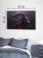 Фотографическая картина «Кошачья магия»
