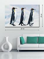 Фотографическая картина «Три пингвина»