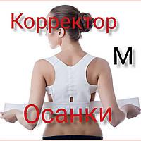 СКИДКА на Корсет для спины Power Magnetic MK1 M 👌🏻