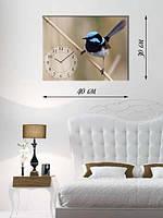 Фотографическая картина с часами «Птица с голубым хохолком»