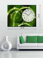 Фотографическая картина с часами «Травинки в росе»
