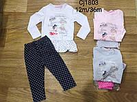 Комплект-двойка  для девочек Sincere 12-36 мес., фото 1