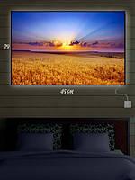Картина с подсветкой 29х45 «Поле золотое»