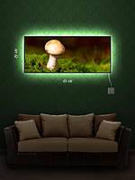 Картина с подсветкой 29х69 «Грибной день»