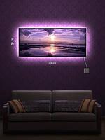 Картина с подсветкой 29х69  «Фиолетовый восход»
