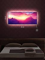 Картина с подсветкой 29х69 «Розовые мечты»