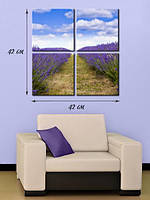 Модульная картина 42х42 на холсте «Цветочное поле»