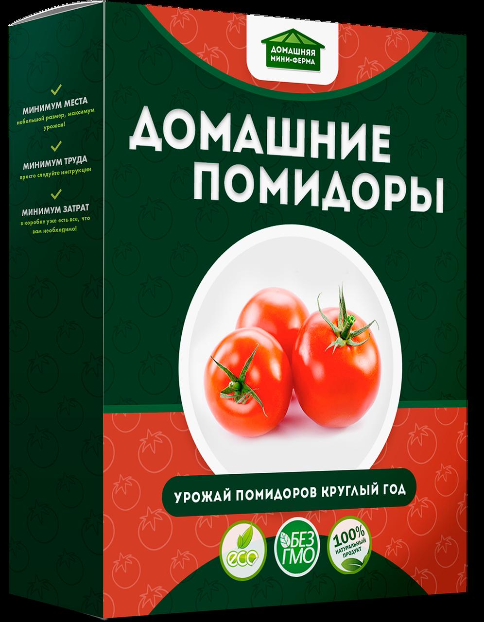 Выращивание помидоров в домашних условиях «Домашняя мини-ферма»