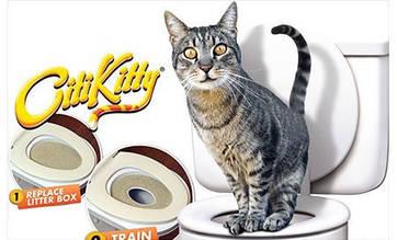 Кошачий туалет | Туалет для котов | Приучатель кошек к унитазу Citi Kitty