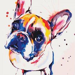 """Картина по номерам """"Попрошайка"""" (собака, животное)"""