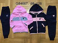 Трикотажный костюм 2 в 1 для девочек оптом, Grace, 98-128 см,  № G84667, фото 1