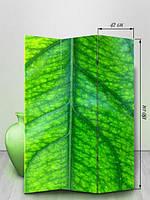 «Зеленый листочек»