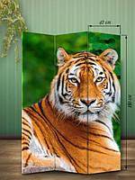 «Тигр на природе»