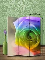 «Радужная роза»
