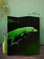 «Зеленая ящерка»
