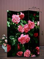 Ширма 180х126 «Куст роз»
