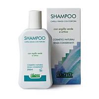 Шампунь для жирного волосся проти лупи ТМ Аржитал / Argital 250 мл