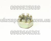 Гайка М24*1.5 поворотного кулака ГАЗ-53,3307