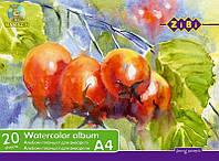 Альбом-планшет А4 для акварели 20л Zib