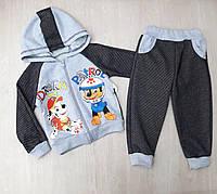 Детский спортивный костюм на мальчика Оптом (26-34)