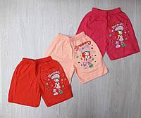 Шорты на девочку трикотажные Оптом (1-4 года)