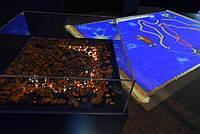 У столиці відкрилася виставка латвійського бурштину