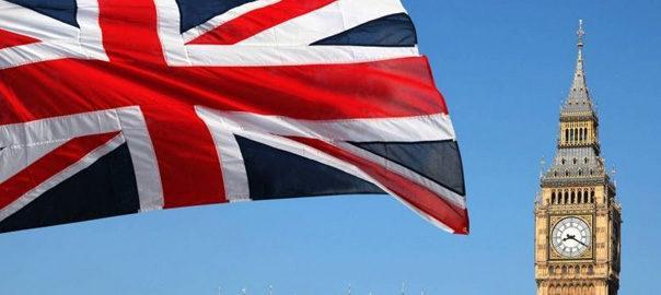 Англія домашня зборка 2.1 eur/кг