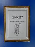 Багет пластиковый 17 мм.Серия 1713., фото 2