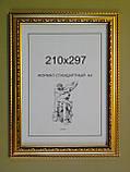 Рамка А4 (210х297).Рамка пластиковая 30 мм.Золото с орнаментом., фото 2