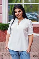 Стильная блузка для полных молоко, фото 1