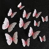 Набор декоративных бабочек - 12шт., фото 2