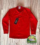 Костюм для мальчика: красная рубашка и темно-синие или черные брюки, фото 3