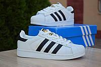 Кроссовки Adidas Superstar женские, белые с черным, в стиле Адидас Суперстар, натуральная кожа, код OD-2853 39