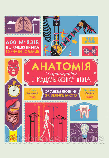 Крутезна інфографіка. Анатомія. Атлас.