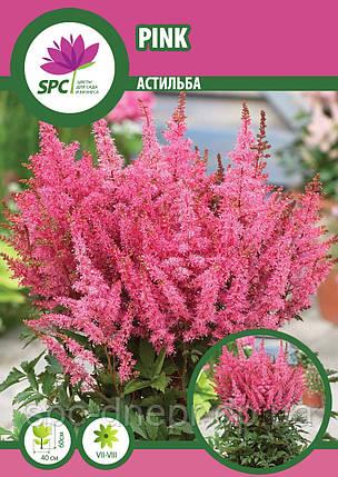 Астильба Pink, фото 2