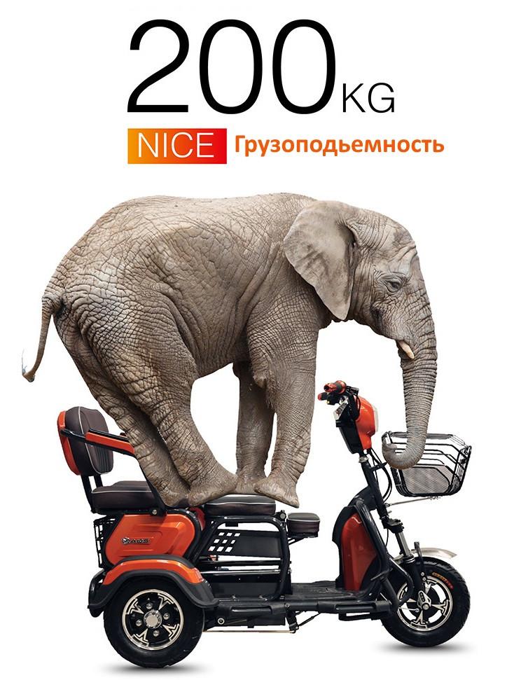 Трехколесный  скутер для инвалидов Бычок