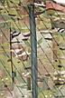 Костюм для военных: мультикам Английский твил рубаха, фото 4