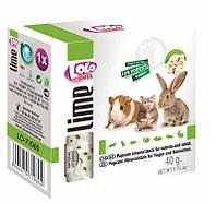 LoLo Pets lime for RODENTS  Минеральный камень ПОПКОРН для грызунов и кроликов