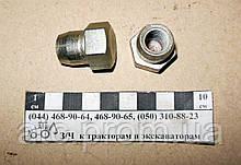 Гайка колпака МТЗ 50-1003104