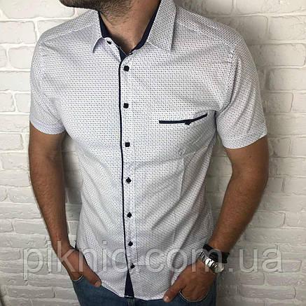 Рубашка мужская классическая L короткий рукав. Турция. Молодежная турецкая рубашка. Белый, фото 2