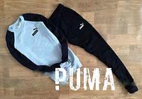 Мужской спортивный костюм Puma VC-018