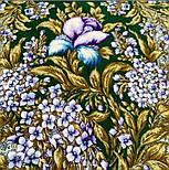 Белой ночи кружевные сны 1844-9, павлопосадский платок шерстяной  с шелковой бахромой, фото 8