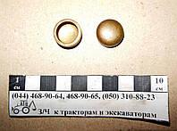 Заглушка головки блока Д-240, Д-65 (d-17 бронзовая) Д02-003-А1